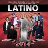 Latino #1's 2014