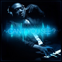 Can't You See? - Timbaland