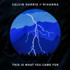 25) Calvin Harris - This Is What You Came For (feat. Rihanna)