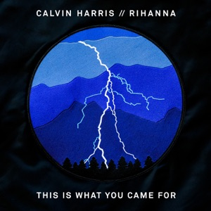 CALVIN HARRIS FEAT RIHANNA - This is what you came for
