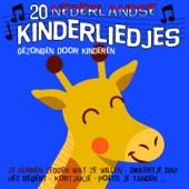 20 Nederlandse Kinderliedjes