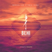 Behi - Huvuund artwork