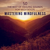 Mastering Mindfulness: 50 The Best of Healing Sounds - Therapy Music to Reduce Stress, Yoga, Find Inner Peace, Train Your Brain to Relax, Meditations to Quiet Your Mind