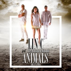 Lin C - Animals