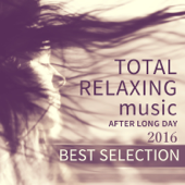 2016 Best Selection: Total Relaxing Music After Long Day, Evening Mindfulness Meditation, Yoga, Spa, Massage