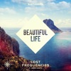 Lost Frequencies ft. San... - Beautiful Life