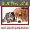 Lullaby Music for Pets Calming Lullabies for Cats Dogs Bird Music