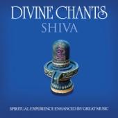 Shivaashtakam