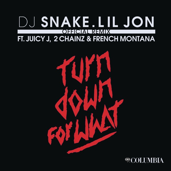 Turn Down for What Album Cover by DJ Snake & Lil Jon
