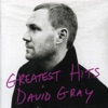 Greatest Hits, David Gray