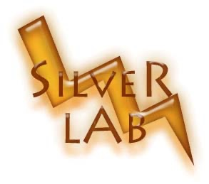 SilverLAB | Podcast