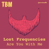 Are You With Me (Radio Edit) - Lost Frequencies