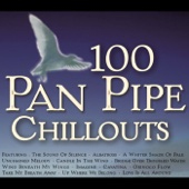 100 Pan Pipe Chillouts