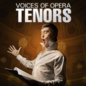 Voices of Opera: Tenors