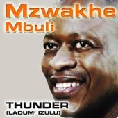 Mzwakhe Mbuli - God the Best artwork