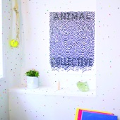 Animal Collective - Live At 9:30  artwork