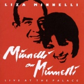 Minnelli On Minnelli - Live At the Palace