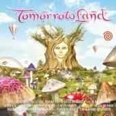Tomorrowland Summer 2011 Edition