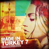 Made in Turkey, Vol. 7