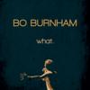 Bo Burnham - what.  artwork