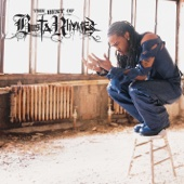 The Best of Busta Rhymes cover art
