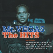 Mr. Vegas: The Hits
