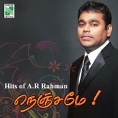 Raaga Music (From