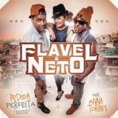 Pedida Perfeita Tararatata (Remixes) [feat. Anna Torres]