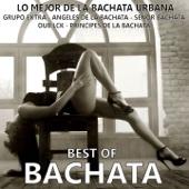 Best Of Bachata (Lo Mejor de la Bachata Urbana - 25 Bachata Hits)