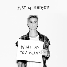 What Do You Mean artwork