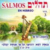 Salmos No. 41
