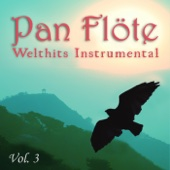 Welthits Instrumental, Vol. 3