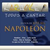 Todos a Cantar Karaoke: Éxitos de Napoleón (Karaoke Version)