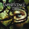 Anywhere But Home (Live From Le Zénith, France/2004), Evanescence