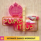 Pump It Up - Ultimate Dance Workout - Ministry of Sound