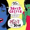 David Guetta - Shot Me Down (feat. Skylar Grey) - Single