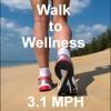 Walk to Wellness