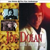 Joe Dolan - The Answer to Everything artwork