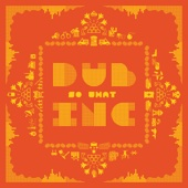 No Matter Where You Come From - Dub Inc