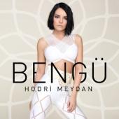 MP3 indir Hodri Meydan