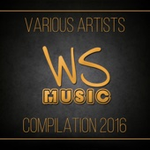 Ws Music Compilation 2016
