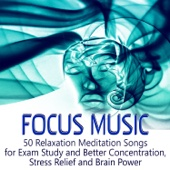 Focus Music: 50 Relaxation Meditation Songs for Better Concentration While Learning, Stress Relief, Brain Power & Exam Study