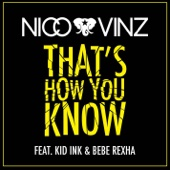 Nico & Vinz - That's How You Know (feat. Kid Ink & Bebe Rexha) Grafik