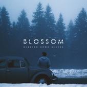 Blossom - Single cover art