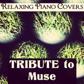 Tribute to Muse