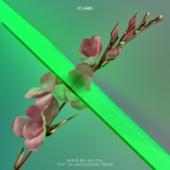 Never Be Like You (feat. Kai) [Disclosure Remix] - Single cover art
