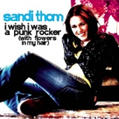 I Wish I Was a Punk Rocker (with Flowers in My Hair) - Single
