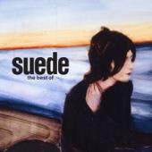 Suede - Animal Nitrate artwork