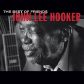 The Healer - John Lee Hooker