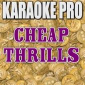 Cheap Thrills (Originally Performed by Sia) [Instrumental Version] - Karaoke Pro